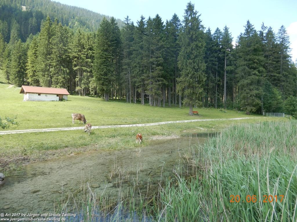 Philosophische Bildwanderung Grän - (Neunerköpfle zur Brotzeit) Tannheim Vilsalpsee Tannheimer Tal - Österreich