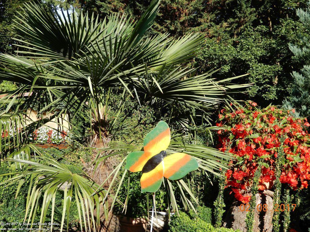 Palmen (Arecaceae oder Palmae)