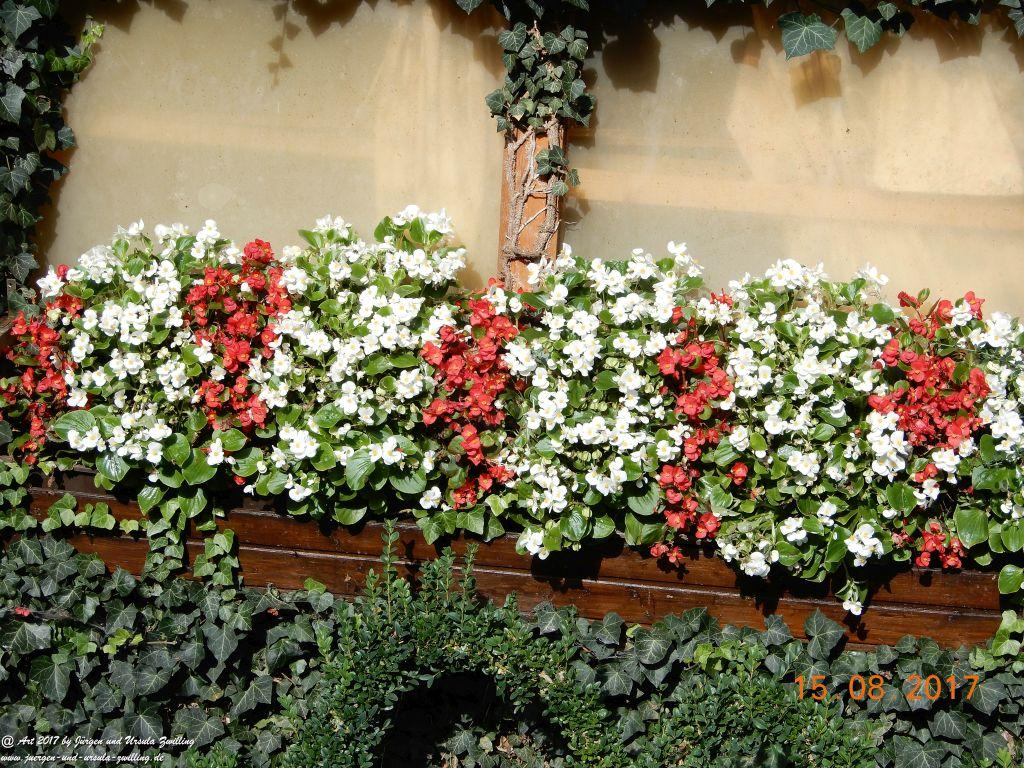 Romantisches Gartenhäuschen