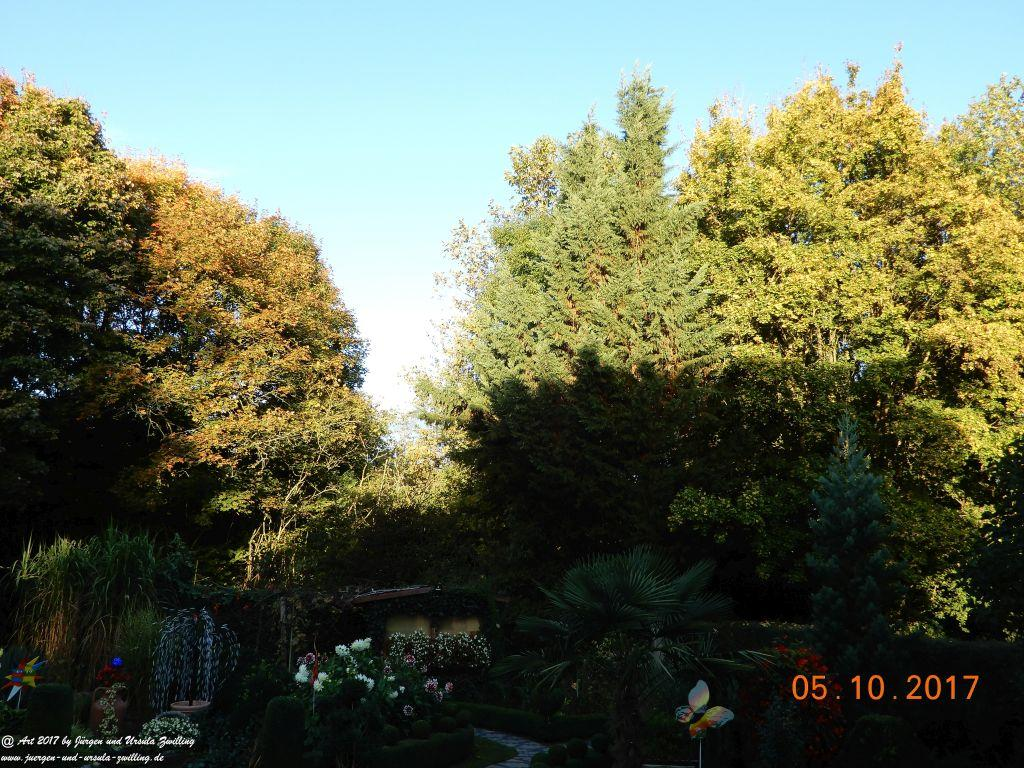 Morgen Erwachen im Garten