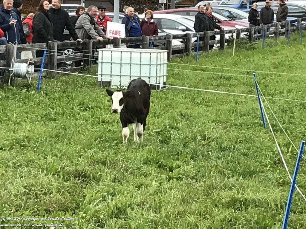 Almabtrieb und Bauernmarkt in Nauders am Reschenpass - Tirol - Landeck - Österreich