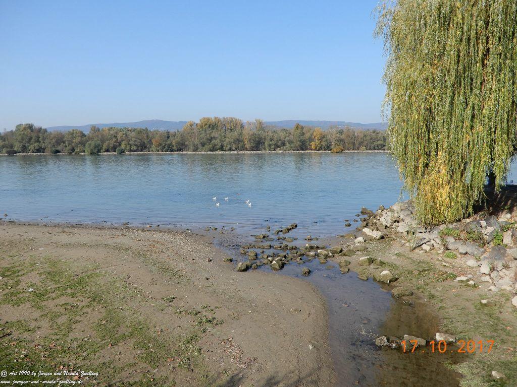 Heidenfahrt - Himmelblau am Rhein - Rheinhessen