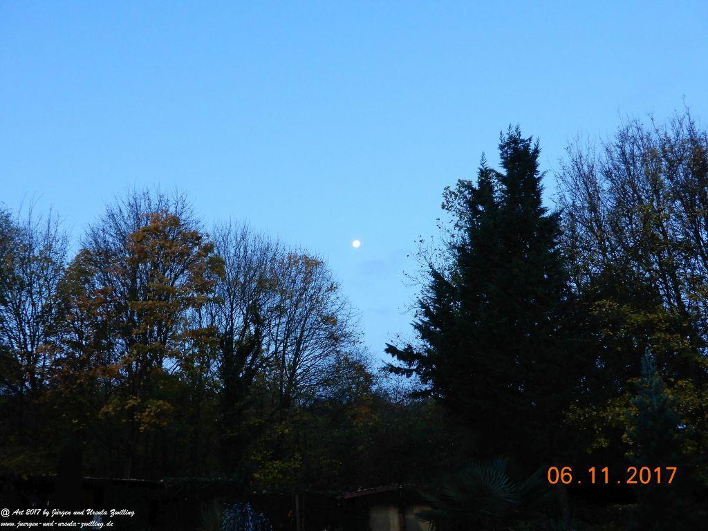 Morgenlicher Mond Blick im Garten