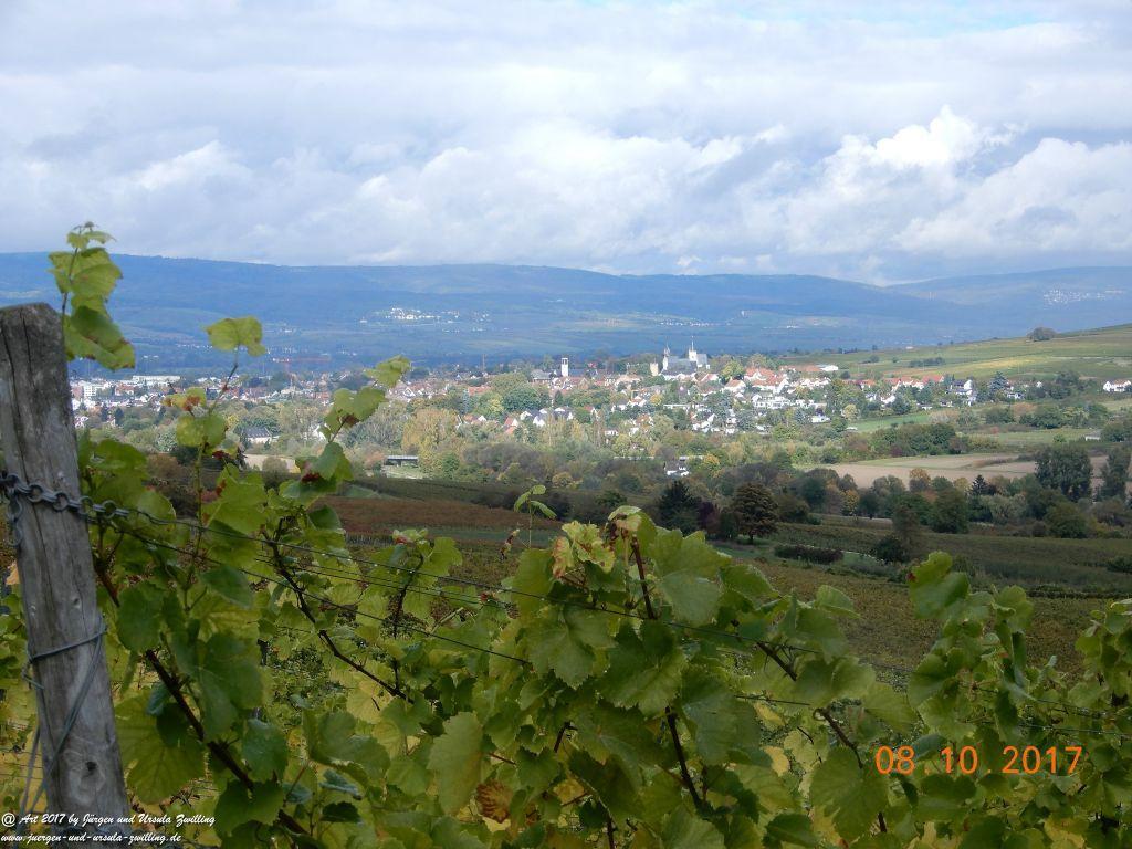 Philosophische Bildwanderung Hiwweltour- Westerberg - Rheinhessen