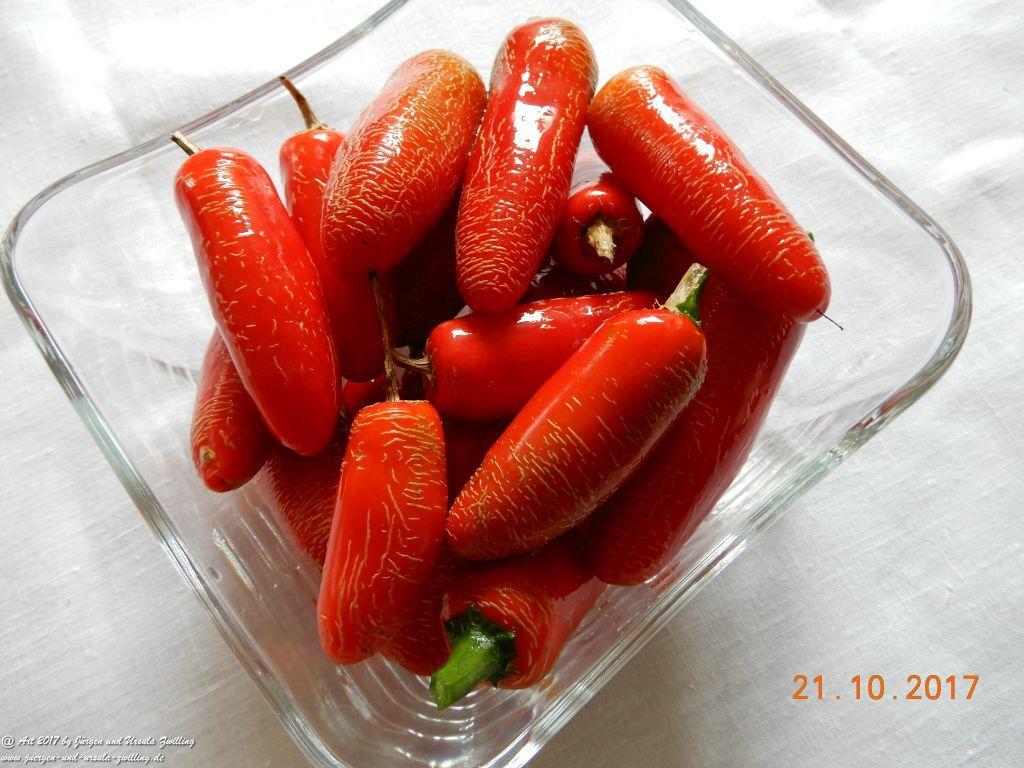 Ursula's Chili in Geschenkgläser eingelegt