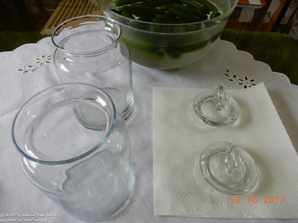 Ursula's eingelegte polnische Salzgurken