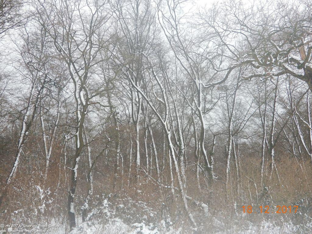 Schnee in den Feldern von Mainz Finthen und Ober Olmer Wald - Rheinhessen