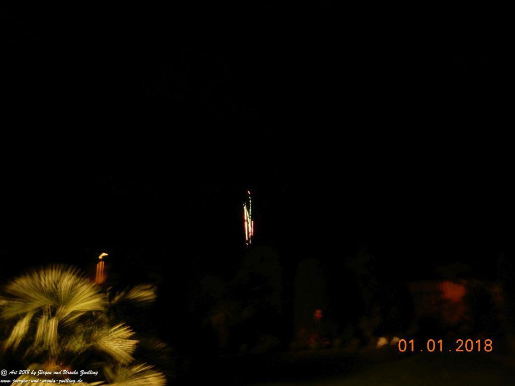 Neujahrsfeuerwerk am Gartenhimmel