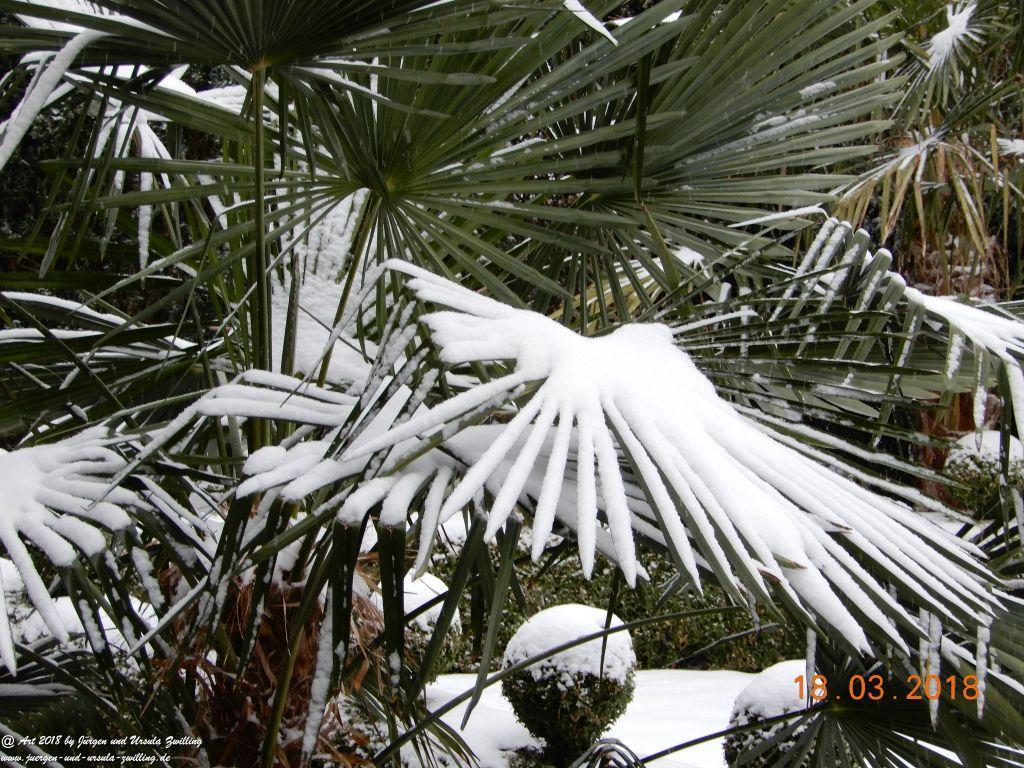 Schnee in Frühling
