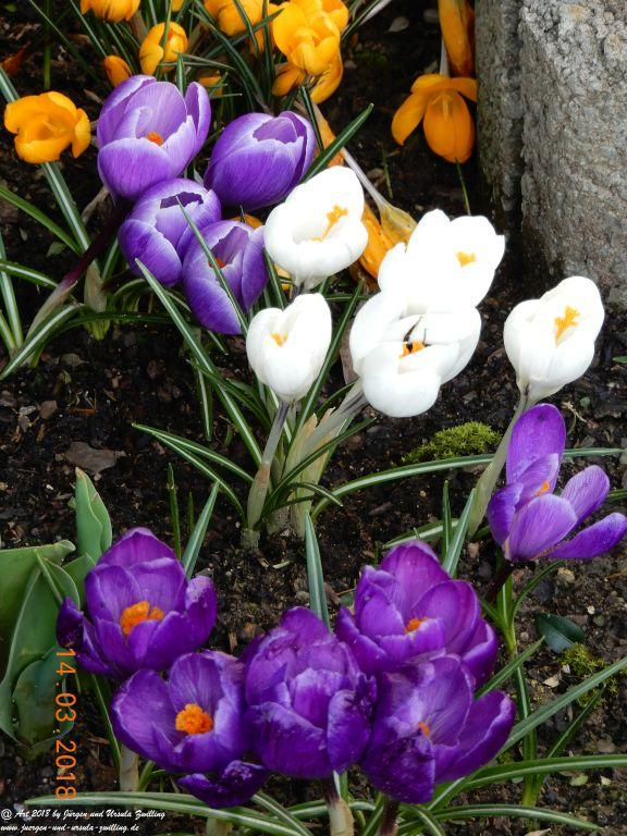 Frühlingsmix zu Ostern