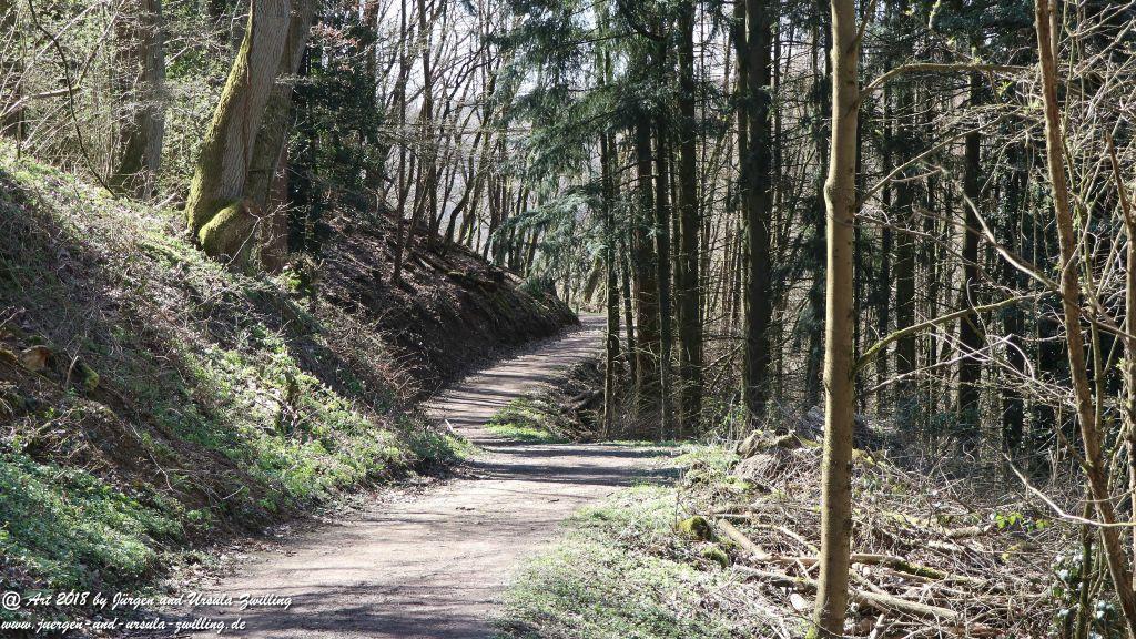 Philosophische Bildwanderung Rauenthaler Spange - Rheingau -Taunus