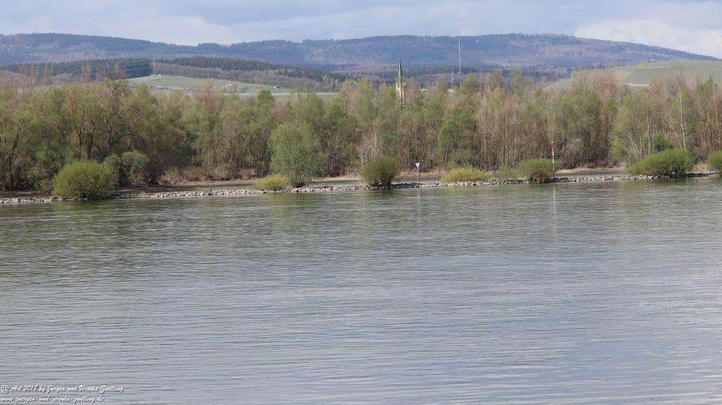 Heidenfahrt -Heidesheim - Rhein - Rheinhessen