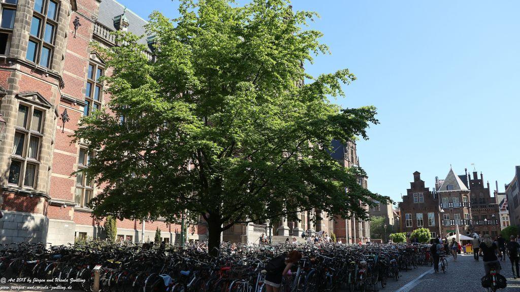 Groningen - Niederlande - Nordsee