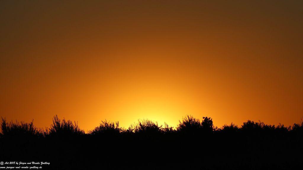 Sonnenuntergang in Rheinhessen - Mainz