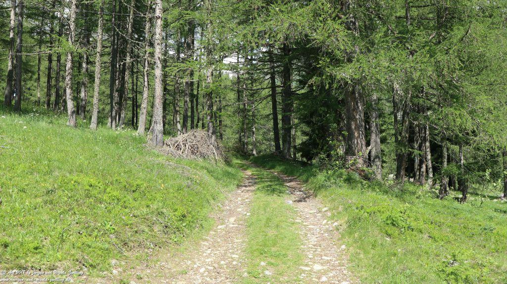 Philosophische Bildwanderung  Wassserfall Bérard  - Le Buet - Vallorcine Mont Blanc - Frankreich