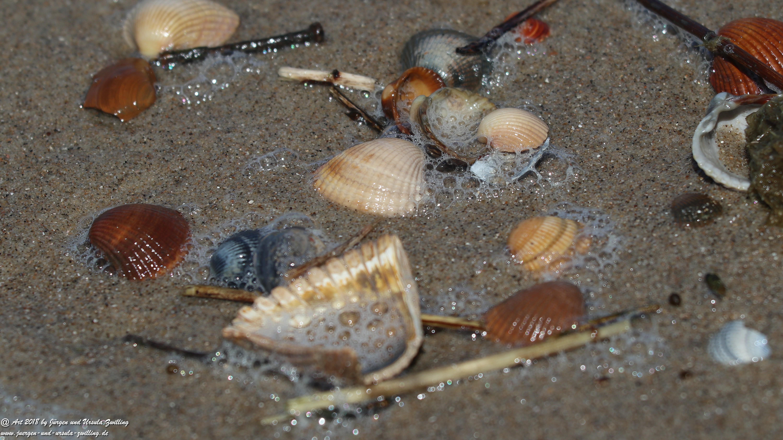 Meereswaschung