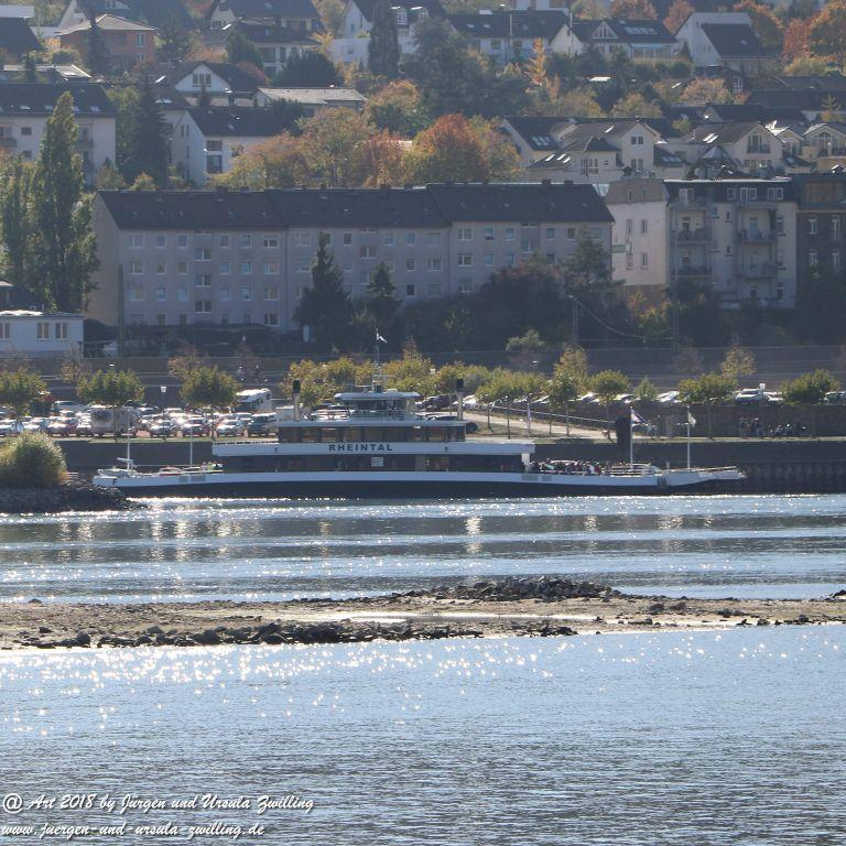 Niedrigwasser am Rhein - Rüdesheim im Rheingau