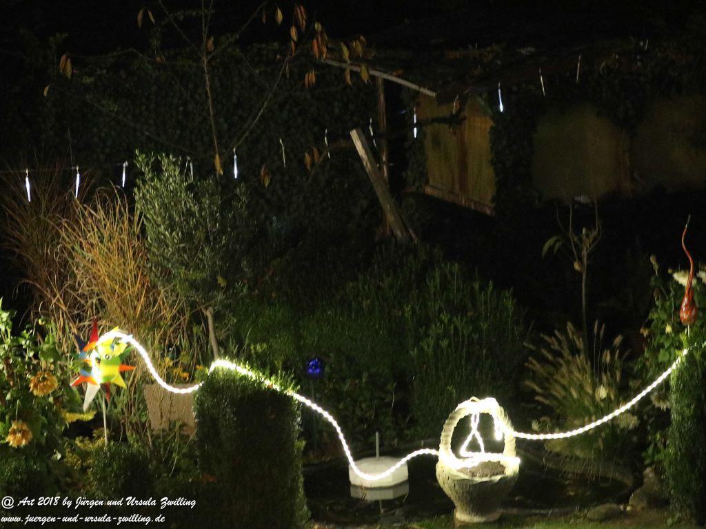 November Garten bei Nacht