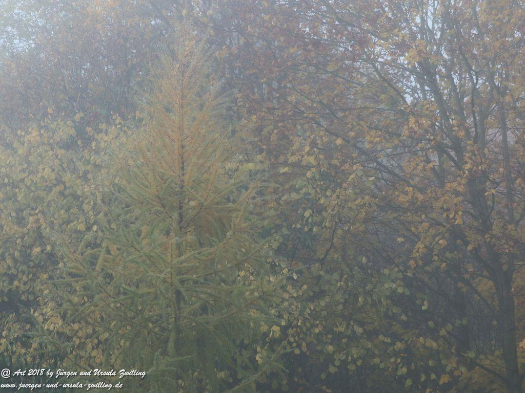Garten - November - Blick