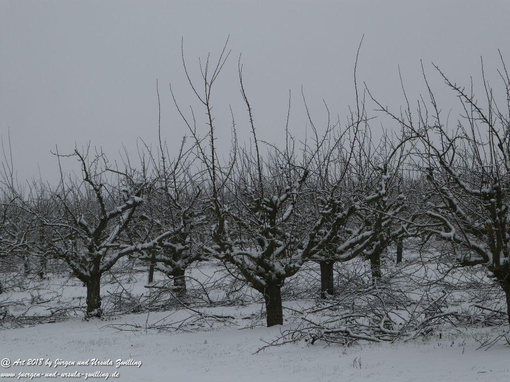Rheinhessen in weiß (Schnee - Felder Mainz Finthen und Ober Olmer Wald)