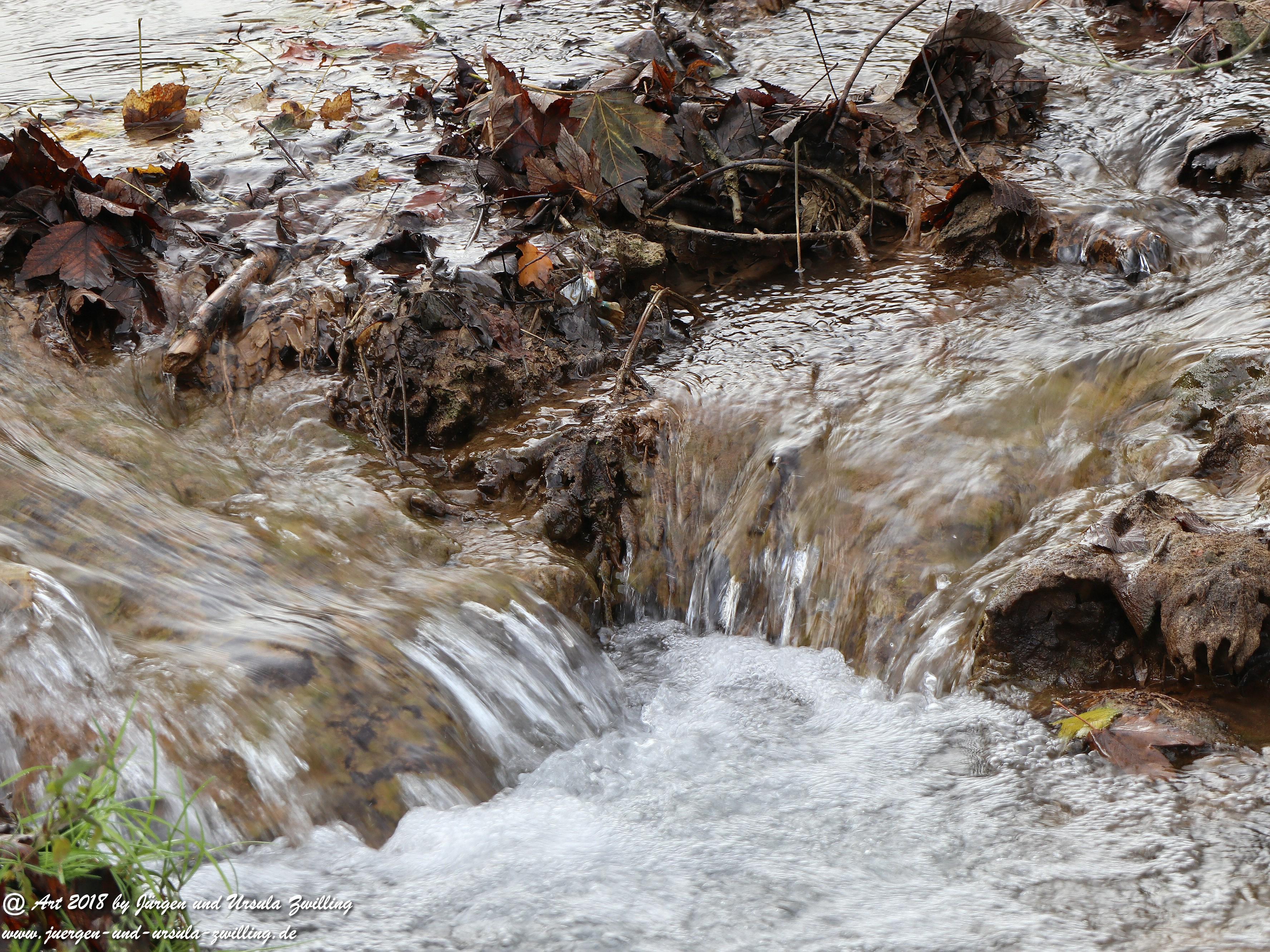Treffpunkt Wasser