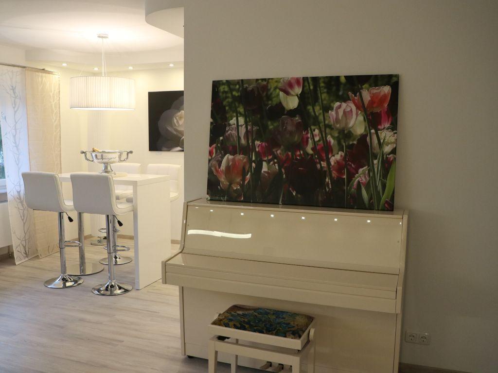 Blick und Einladung in unsere Galerie - Tulpen