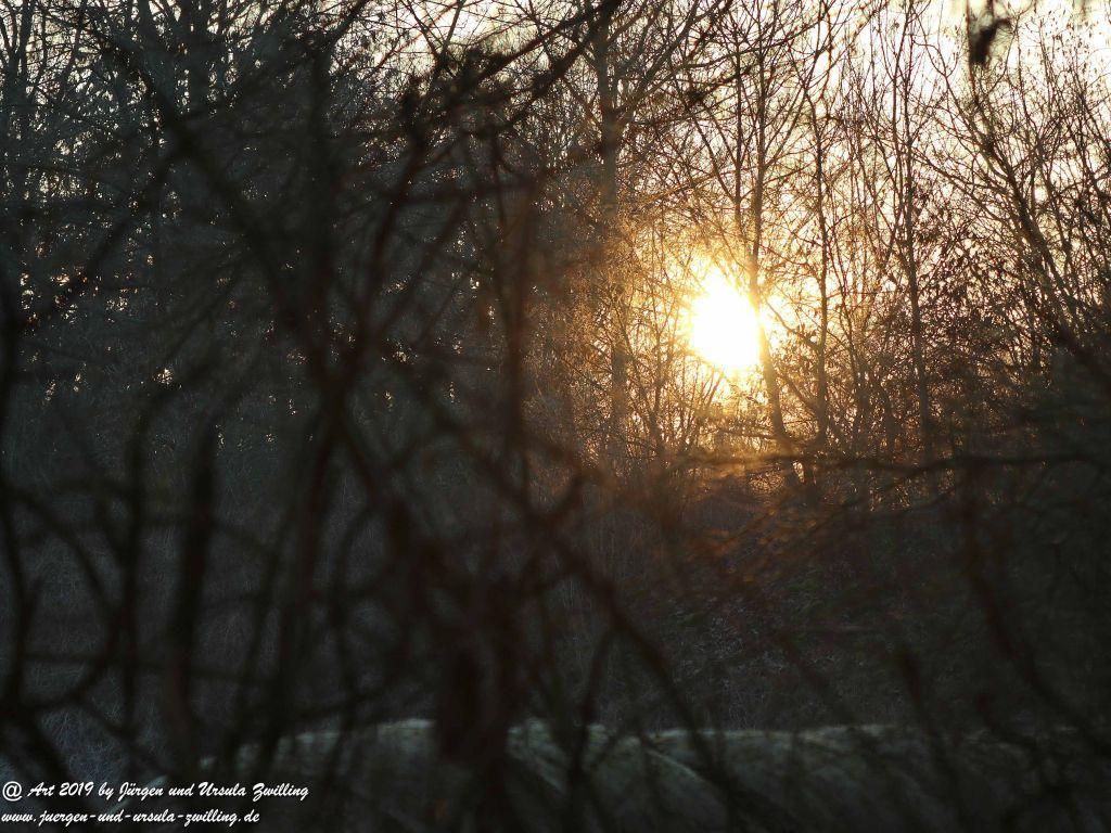 Sonnenaufgang in Mainz - Rheinhessen