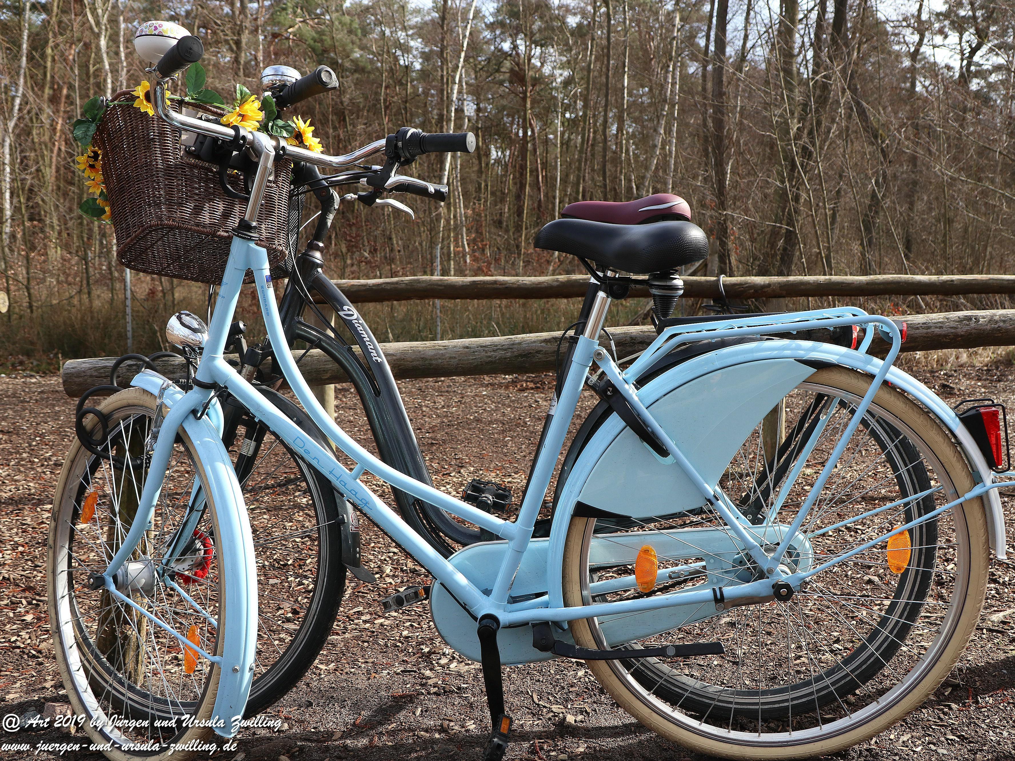 Darßer-Zwillings-Fahrräder