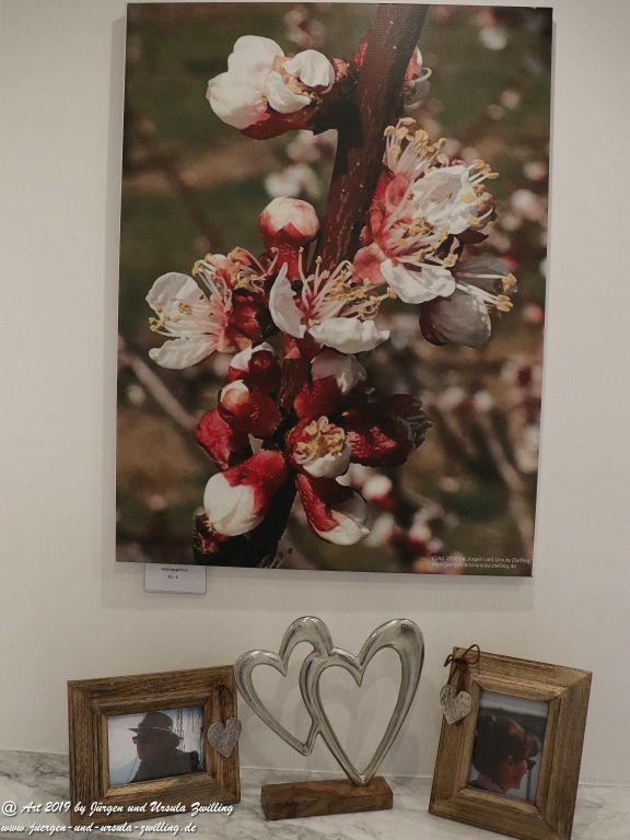 Blick und Einladung in unsere Galerie - Frühlingsstart