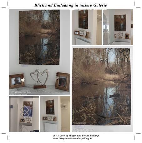 Blick und Einladung in unsere Galerie - Rheinurwald 1