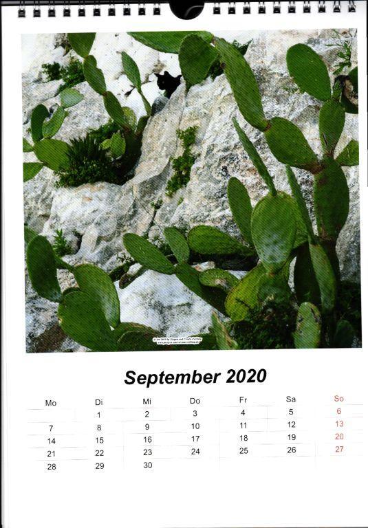 Galerie Kalender 2020 Italienische Träume