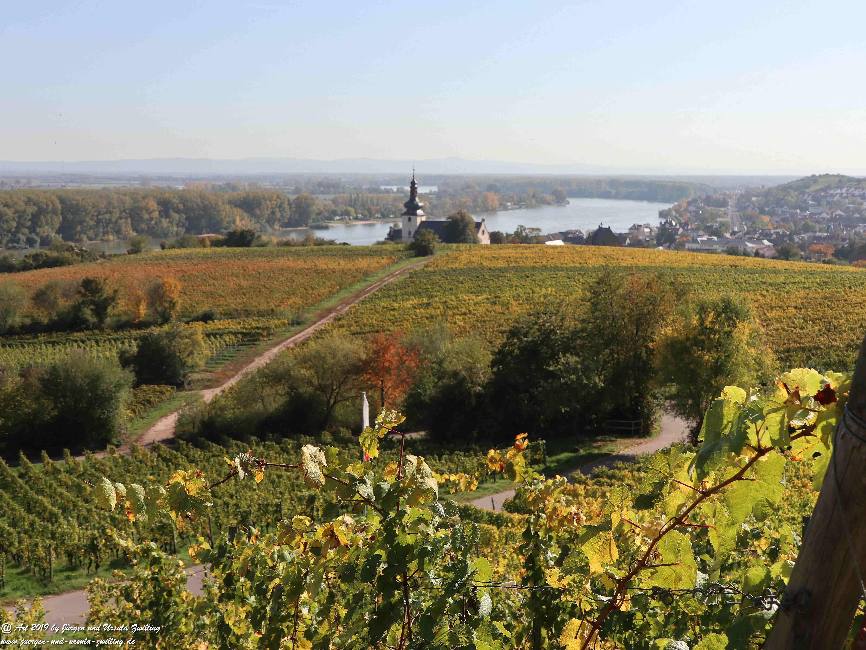 Herbst in Nierstein 1