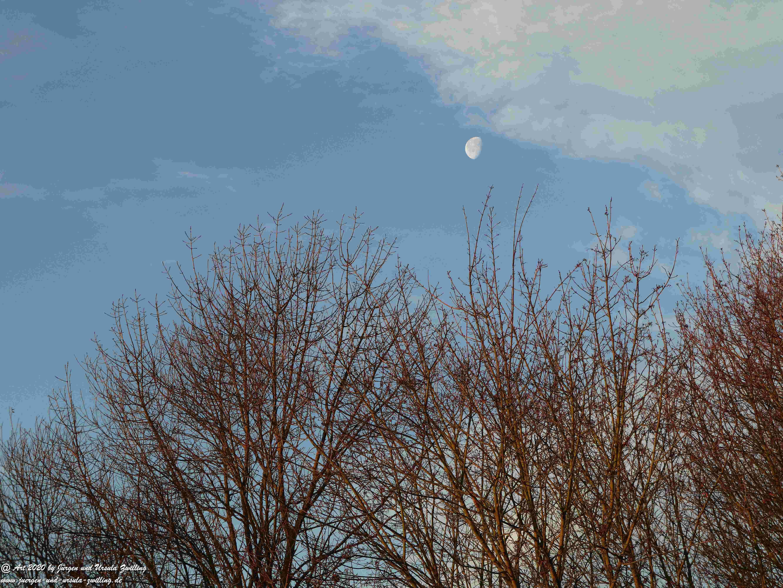 Januar - Morgen - Sonne 2