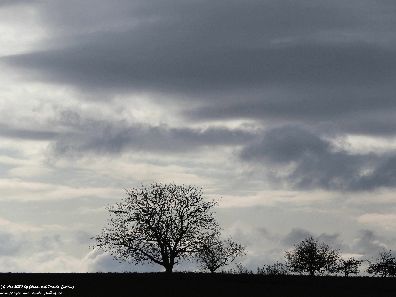 Rheinhessischer Winterhimmel 5