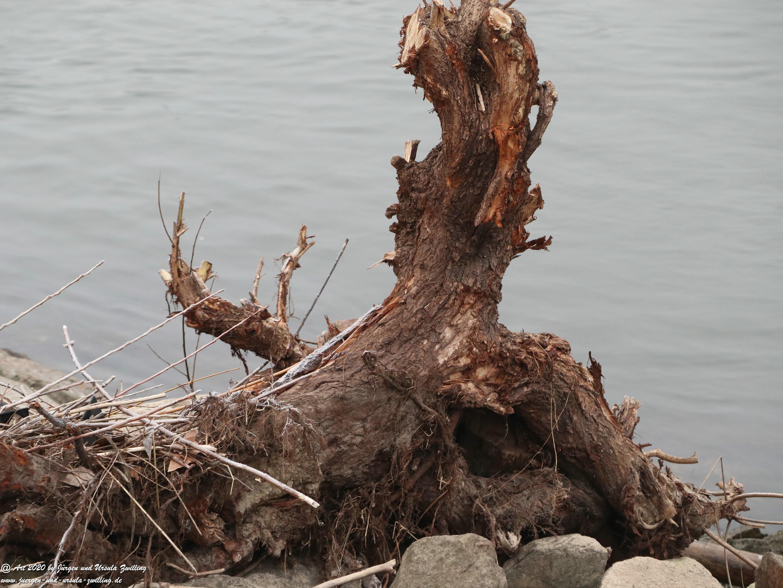 Rhein-Holz-Kunst 8