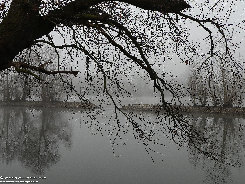 Rhein- Januar - Spiegelung 1