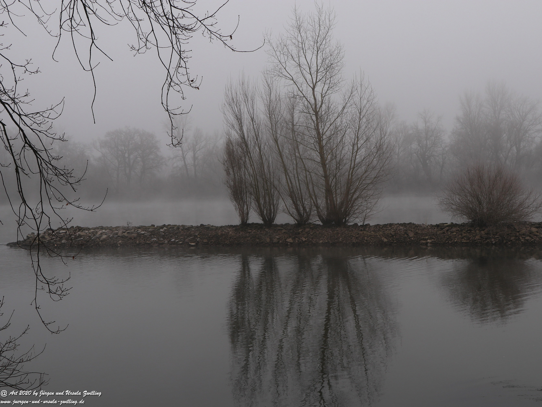 Rhein- Januar - Spiegelung 3