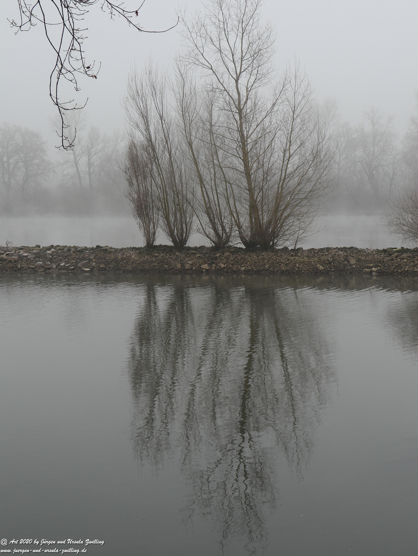 Rhein- Januar - Spiegelung 4