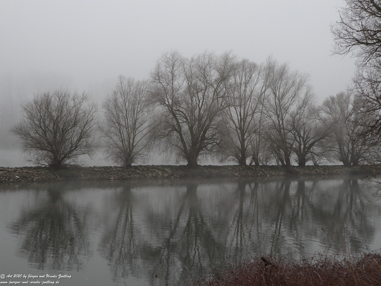 Rhein- Januar - Spiegelung 6