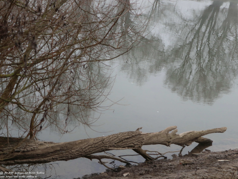 Rhein- Januar - Spiegelung 8