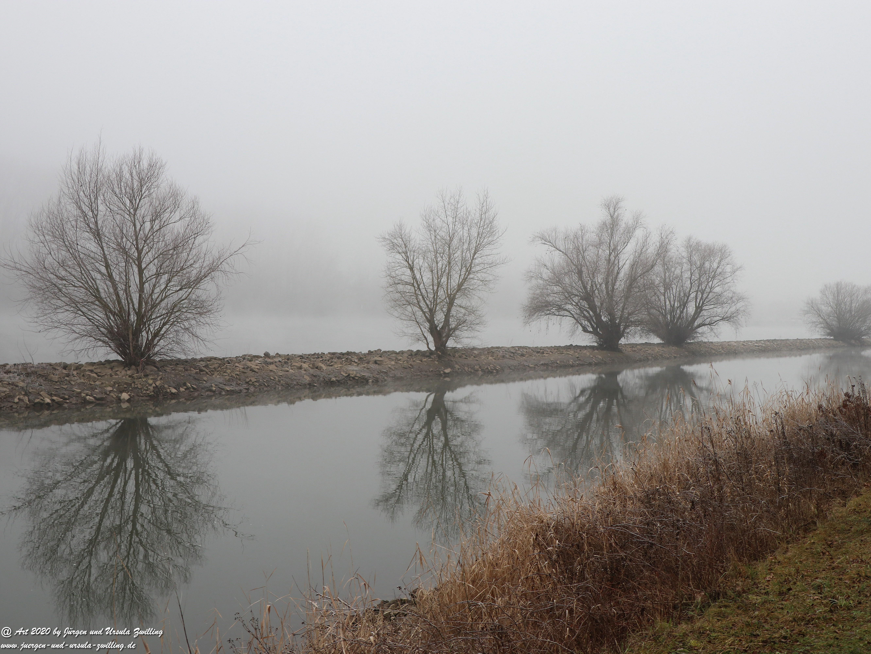 Rhein- Januar - Spiegelung 9