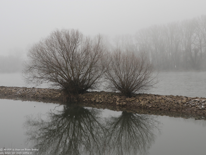 Rhein- Januar - Spiegelung 11