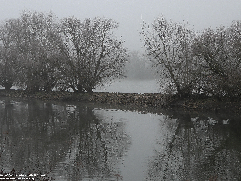 Rhein- Januar - Spiegelung 13