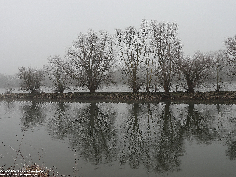 Rhein- Januar - Spiegelung 14