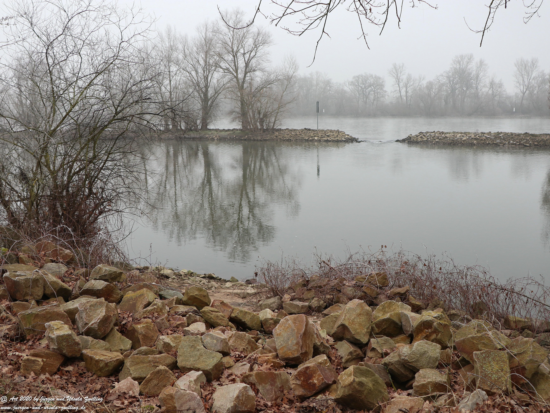 Rhein- Januar - Spiegelung 15