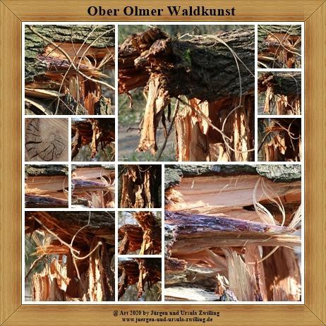 Ober Olmer Waldkunst - Ober Olmer Wald - Rheinhessen
