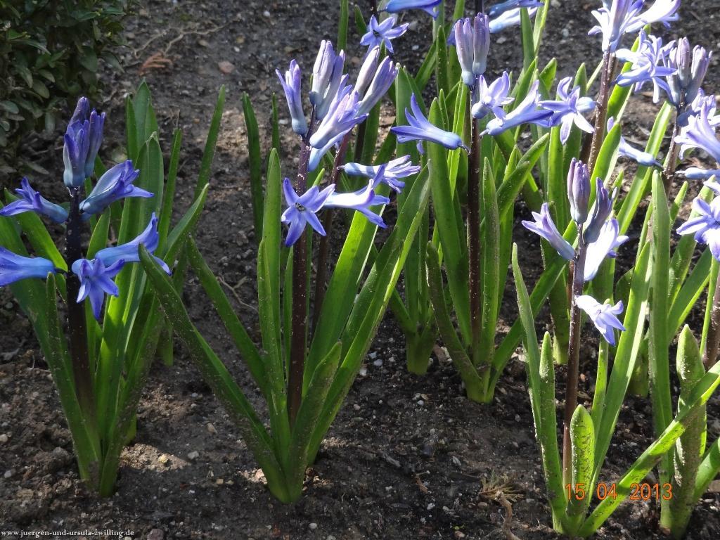 15.-16. April  Garten