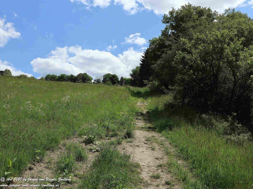 Philosophische Bildwanderung  Schwälbchen's Flug  - Wisper Trail - Taunus