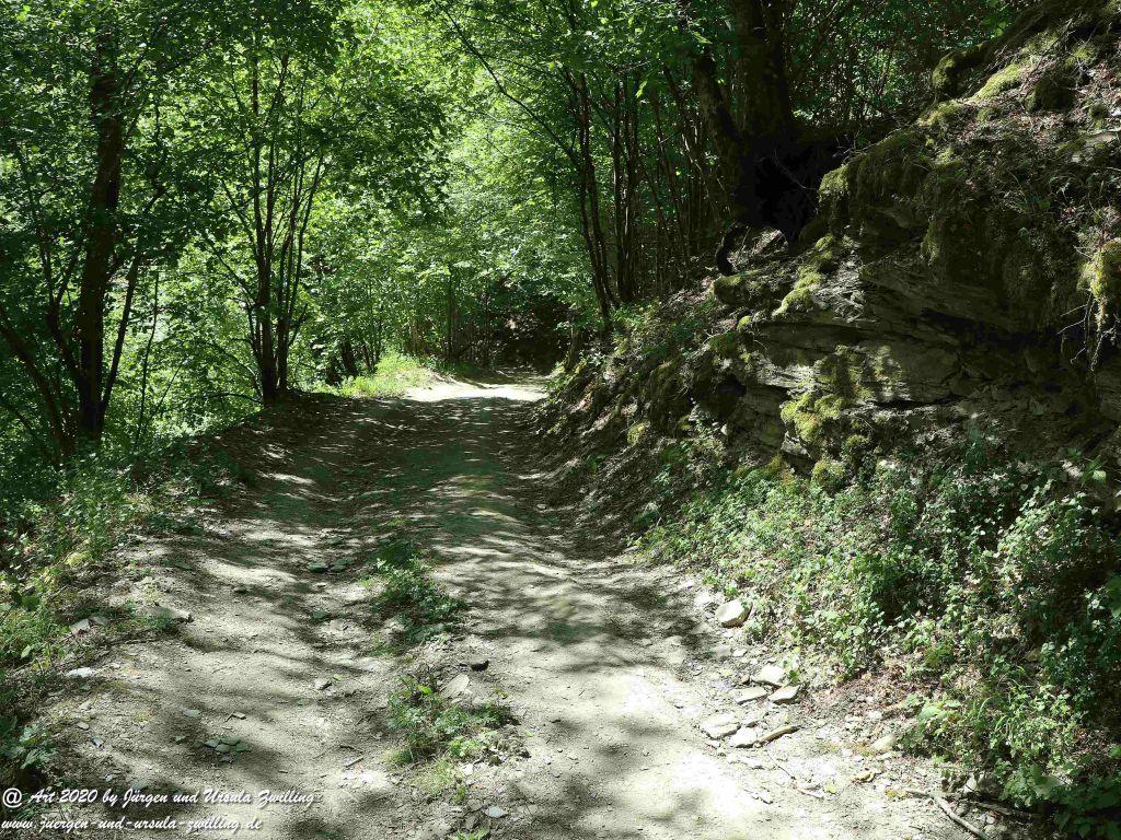 Philosophische Bildwanderung Wispertalsteig Wisper Trail - Taunus