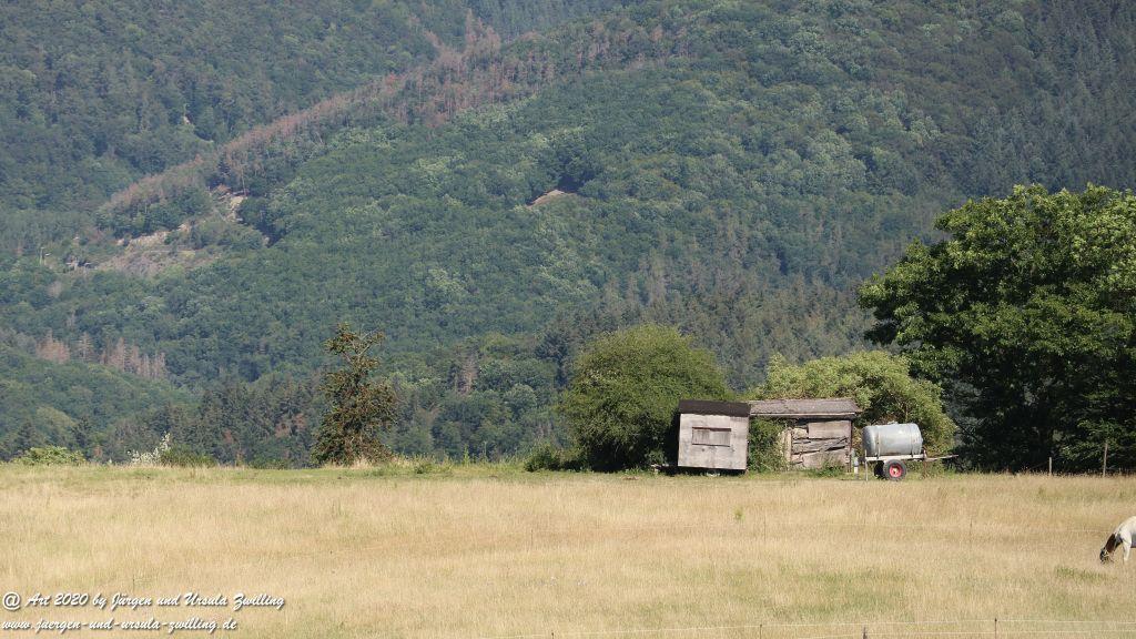 Philosophische Bildwanderung Via Monte Preso Wisper Trail - Taunus